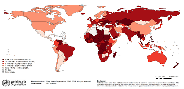 New measles surveillance data from WHO